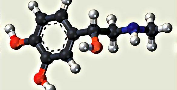 Auch Väter haben Hormone: Prolaktin