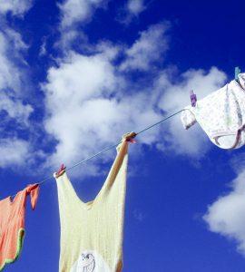 Wäschst du noch oder waschtrocknest du schon?