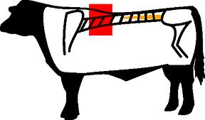 Rib-Eye
